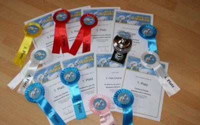 Alpakashow Buchloe 2016 – erneut Nachzuchtsieger