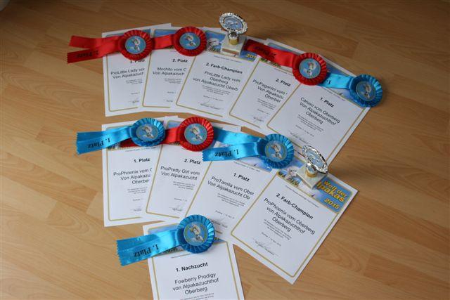Buchloe 2015 – Nachzuchtsieger